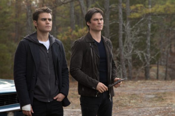 The Vampire Diaries TV show on The CW: series finale, no season 9 (canceled or renewed?)