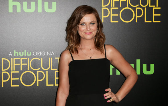 Amy Poehler of The Handmade Project on NBC