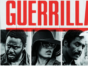 Guerrilla TV show on Showtime: (canceled or renewed?)