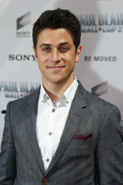 David Henrie: Wizards of Waverly Place TV show on Disney Channel: canceled or renewed?