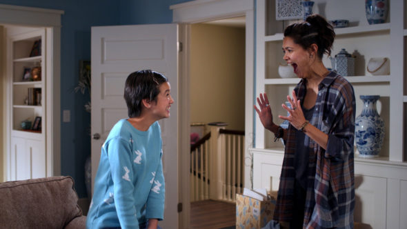 Andi Mack TV show on Disney Channel: season 2 renewal (canceled or renewed?)