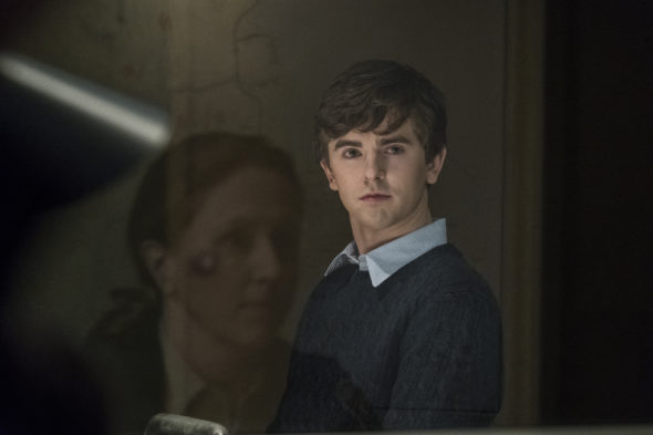 Freddie Highmore to star in The Good Doctor TV show on ABC: season 1 (canceled or renewed?)