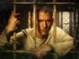 Prison Break TV show on FOX: (canceled or renewed?)