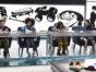 The Toy Box TV show on ABC: season 2 renewal (canceled or renewed?)