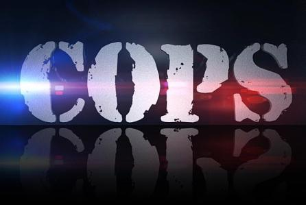 Cops TV show on Spike TV: (canceled or renewed?)