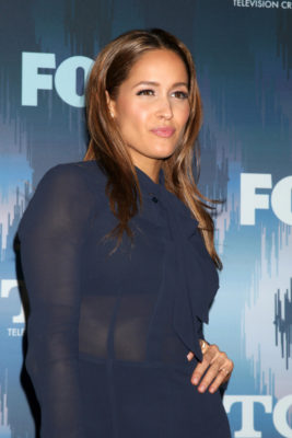 Rosewood: Jaina Lee Ortiz to Star on New ABC TV Show: (canceled or renewed?)