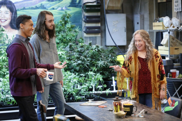 Disjointed: Cast and Crew Comment on Netflix Cancellation - canceled