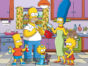 The Simpsons TV show on FOX: season 29 viewer voting episode ratings (cancel or renew season 30)