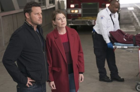 Grey's Anatomy TV Show: canceled or renewed?