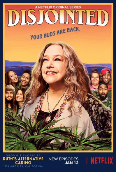 Disjointed TV show on Netflix: season 1 viewer votes episode ratings (canceled or renewed season 2?)