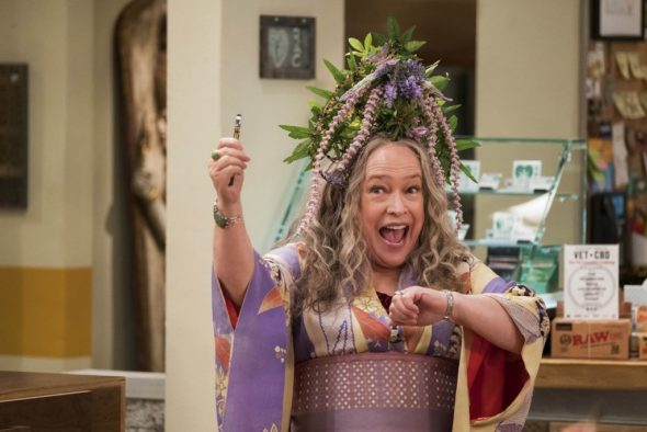 Disjointed TV show on Netflix: (canceled or renewed?)