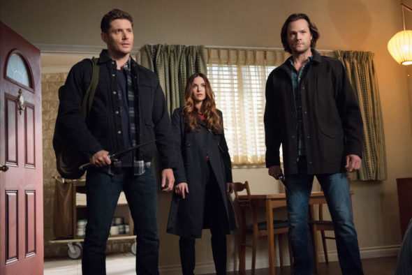 Supernatural Officially Renewed For Season 14