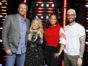 The Voice TV show on NBC: canceled or season 15? (release date); Vulture Watch