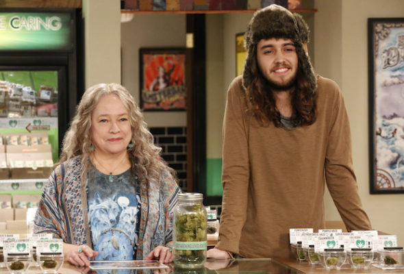 Disjointed TV show on Netflix: season 2 viewer votes episode ratings (canceled or renewed season 3?)