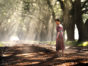 Preacher TV show on AMC: (canceled or renewed?)