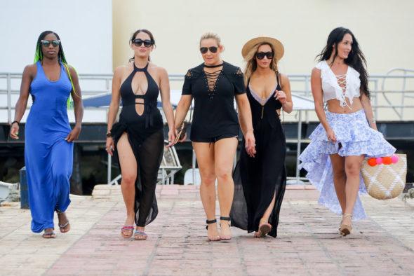Total Divas TV show on E!: season 8 and season 9 renewal (canceled or renewed?)