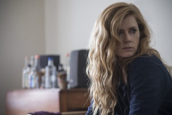 Sharp Objects TV show on HBO: canceled or season 2? (release date); Vulture Watch