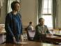 The Sinner TV show on USA Network: season 2 viewer votes (cancel or renew season 3?)