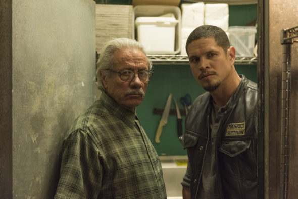 MAYANS MC TV show on FX: season 1 viewer votes episode ratings (cancel or renew season 2?)