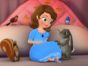 Sofia the First TV show ending on Disney Junior