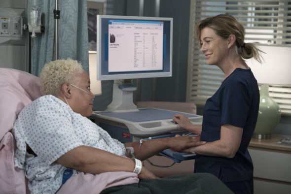 Grey's Anatomy TV show on ABC: season 15 viewer votes (cancel or renew?)