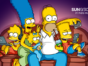 The Simpsons TV show on FOX: season 30 ratings (cancel or renew?
