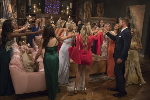 The Bachelor TV show on ABC: season 23 (canceled or renewed?)