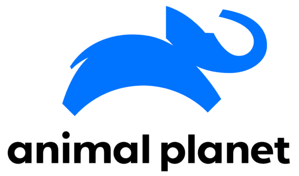 Animal Planet TV shows: canceled or renewed?