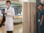 The Good Doctor TV Show on ABC: canceled or renewed?