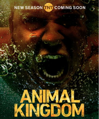 Animal Kingdom TV show on TNT: (canceled or renewed?)
