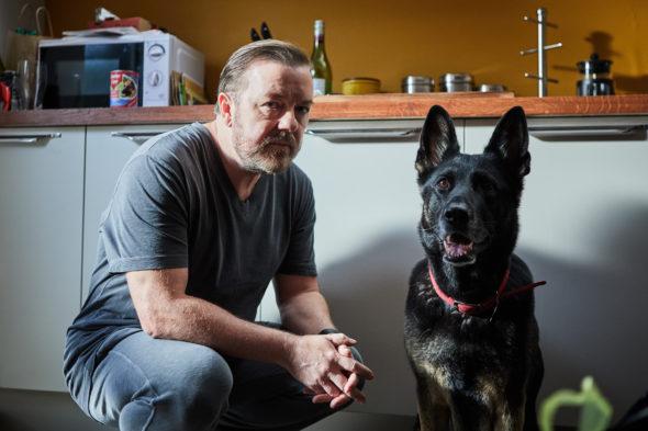After Life TV show on Netflix: season 1 (canceled or renewed?)