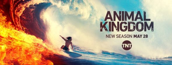 Animal Kingdom TV show on TNT: season 4 ratings (canceled renewed season 5?)