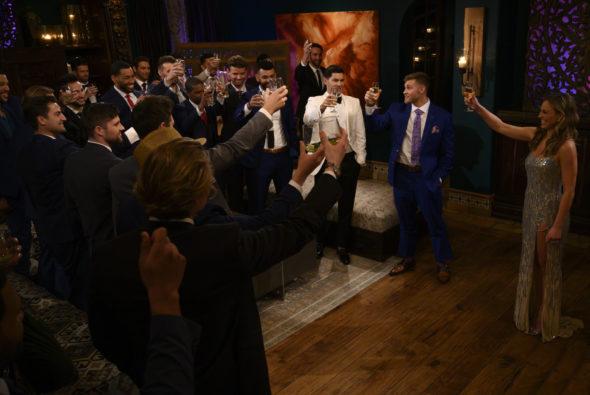 The Bachelorette TV show on ABC: canceled or season 16? (release date); Vulture Watch