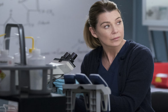 Grey's Anatomy TV show on ABC: season 16 renewal for 2019-20 season