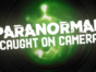 Paranormal Caught on Camera TV show on Travel Channel: (canceled or renewed?)