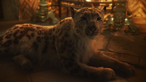 His Dark Materials: HBO Teases Series Based on Philip