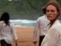 The I-Land TV show on Netflix: (canceled or renewed?)