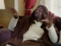 Black Jesus TV show on Adult Swim: (canceled or renewed?)