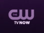 The CW TV show ratings (cancel or renew?)