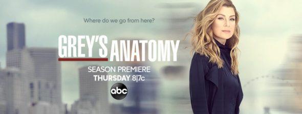Grey's Anatomy TV show on ABC: season 16 ratings (cancel or renew?)