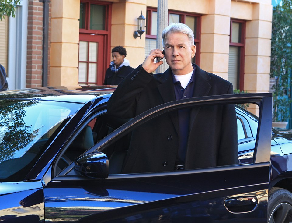 NCIS TV show on CBS: season 17 viewer votes (cancel or renew?)