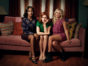 Almost Family TV show on FOX: canceled or renewed for season 2?