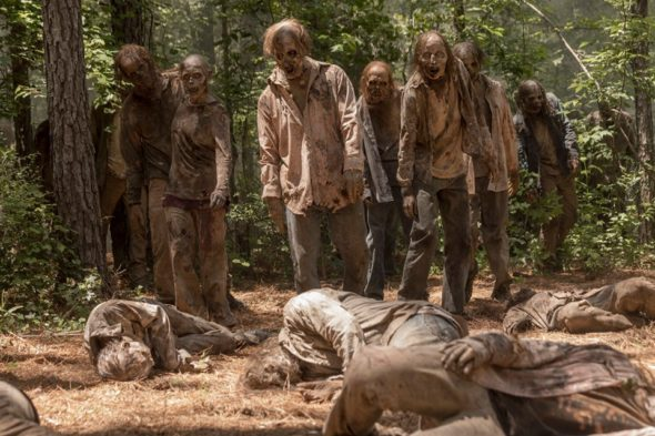 The Walking Dead TV show on AMC: season 10 viewer votes (cancel or renew?)
