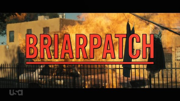 Briarpatch TV Show on USA Network: canceled or renewed?