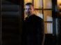 Ray Donovan TV show on Showtime: canceled, no season 8