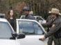 The Blacklist TV Show on NBC: canceled or renewed?