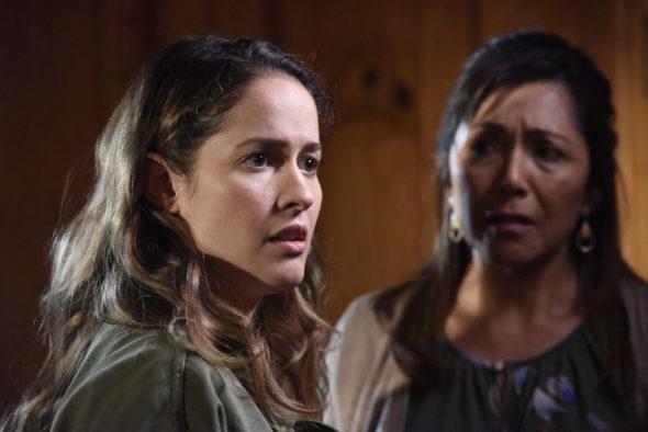 Station 19 TV Show on ABC: canceled or renewed?