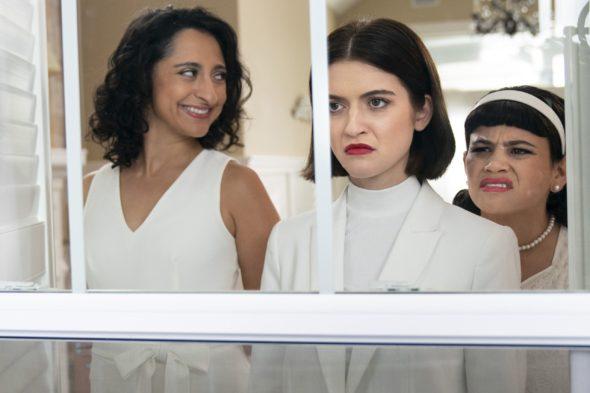 Three Busy Debras TV Show on Adult Swim: canceled or renewed?