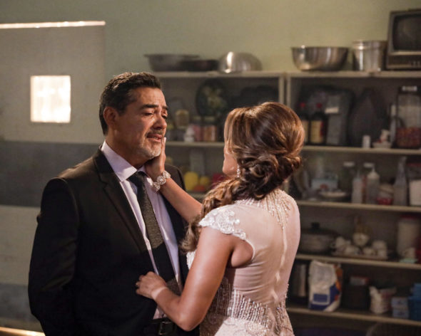 The Baker and the Beauty TV show on ABC: (canceled or renewed?)