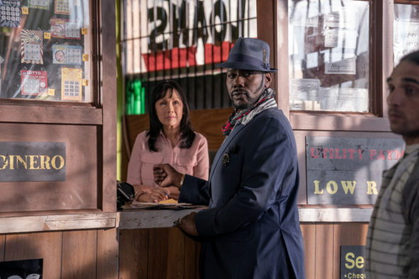 P-Valley TV show on Starz: canceled or renewed for season 2?